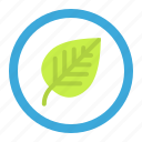 biology, laboratory, leaf, plate, school, science icon