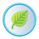 biology, leaf, learning, plate, school, science icon