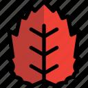 autumn, education, leaf, red, school icon