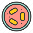 bacteria, cell, disease, lab, micro organism, petri dish, virus icon