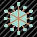 adenovirus, bacteria, cell, disease, lab, micro organism, virus icon