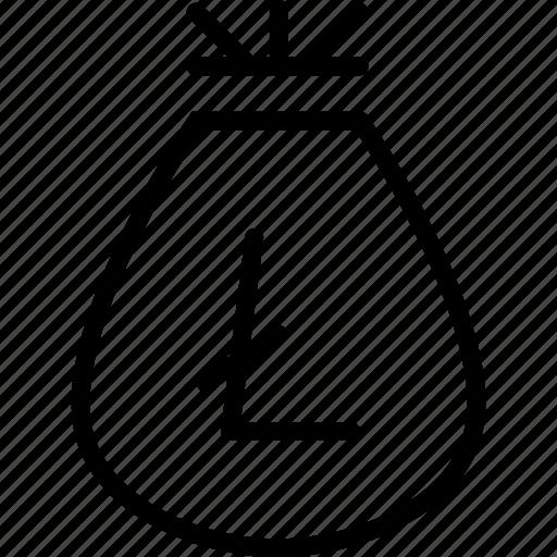 bag, cash, finance, funds, litecoin, prize, reward icon