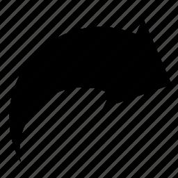 arrow, dashboard, redo, right, turn, ui icon