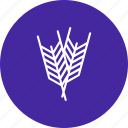 crop, fields, plant, wheat icon