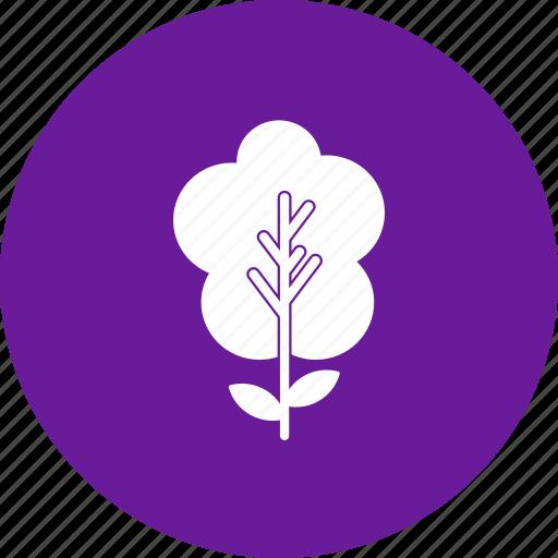 nature, plant, tree icon