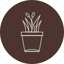home, nature, plant, pot icon