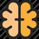 brain, mind, organ, mental, create, idea, thinking