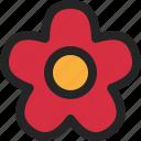 flower, flora, bloom, blossom, spring, plant