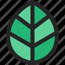 leaf, leaves, green, eco, botanical, nature
