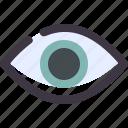 eye, retina, visible icon