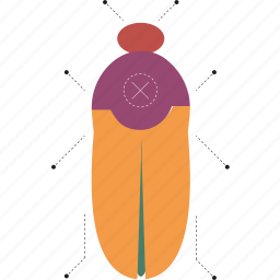 bug, cockroach, insect icon
