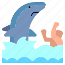 animal, attack, jaws, sea, shark, swimming, water icon