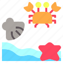 beach, crab, nature, sand, sea, shell, star icon