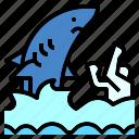animal, attack, jaws, sea, shark, swimming, water
