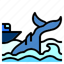 animal, boat, nautical, ocean, sea, water, whale icon