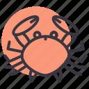 beach, crab, seafood, shell