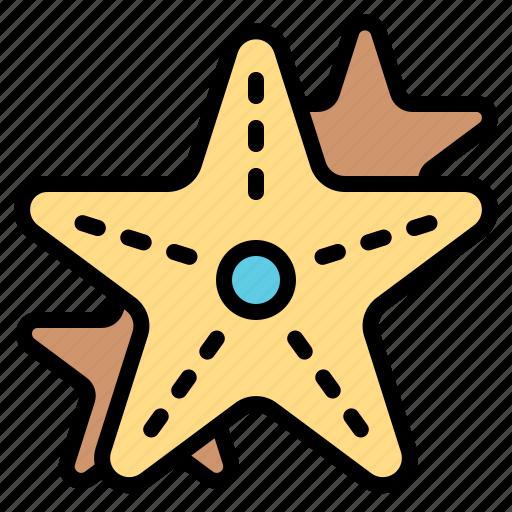 animal, aquatic, life, ocean, sea, starfish icon