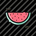 beverage, fruit, melon, water