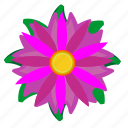 astra, bud, color, flower, violet icon