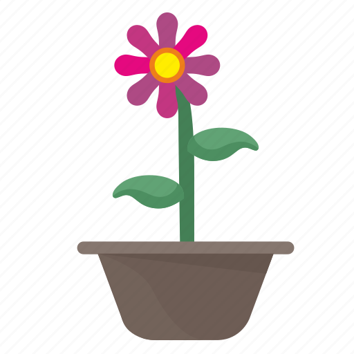 flower, home, plant, rose icon
