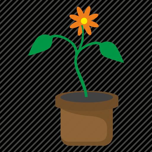bud, flower, pot icon