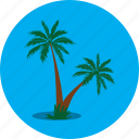 beach, holiday, island, nature, palm tree, plant, tree icon