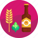 barley, beer bottle, hops, beer ingredients, beer icon