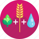 barley, hops, beer ingredients, water, beer icon