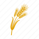 barley, grass, plant, spike, sulfuric icon