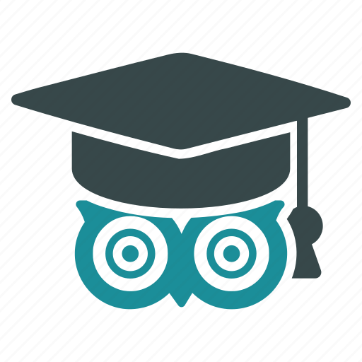 education, knowledge, learn, learning, owl, study, wisdom icon