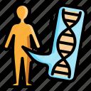 human, genome, biology, genetics, dna, gene