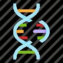 life, dna, biology, cas9, gene, crispr, genetic