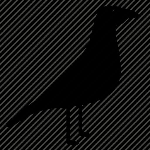 bird, dove, sparrow, stay icon