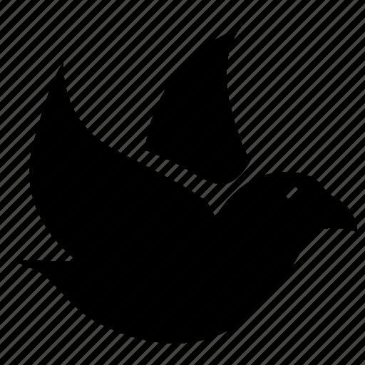 bird, fly, small, sparrow icon