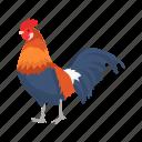 animal, bird, chicken, cock, domestic animal, gallinaceous bird icon