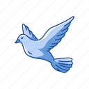 animal, bird, dove, feather, flying bird, pigeons, wings