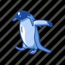 animal, aquatic bird, bird, flippers, penguin