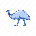 animal, beak, bird, emu, flightless bird, mainland bird, tasmanian emu icon