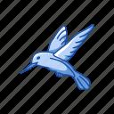 animal, beating wing, bird, feather, flying bird, humming bird, territorial icon
