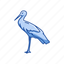 animal, beak, bird, crane, feather, flying bird, whooping crane icon