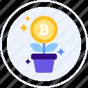 bitcoin, bitcoin tree, farm, money tree, plant icon