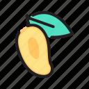 food, healthy, mango, sweet