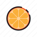 citrus, fruit, orange, organic icon