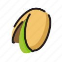 food, fruit, nut, pistachio icon