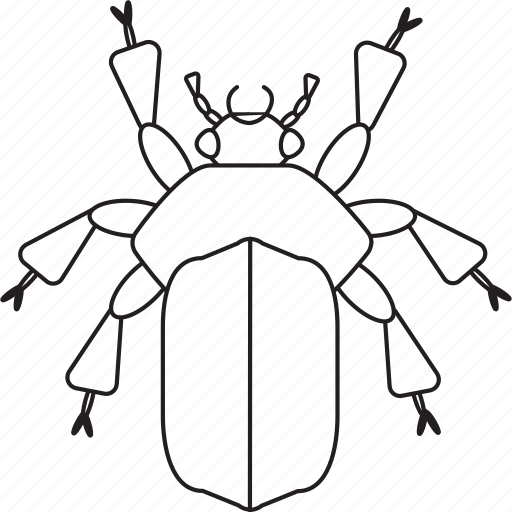 art, beetle, bug, bugs, bw, graphic, insect icon