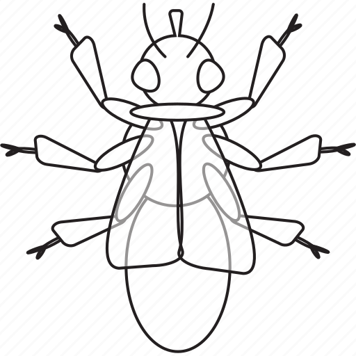 art, bug, bugs, bw, fly, graphic, insect icon