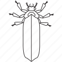 art, bug, bugs, bw, firefly, graphic, insect icon
