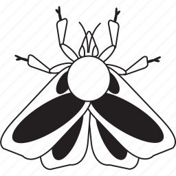 art, bug, bugs, bw, graphic, insect, moth icon