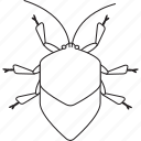 art, bug, bugs, bw, graphic, insect, stinkbug icon