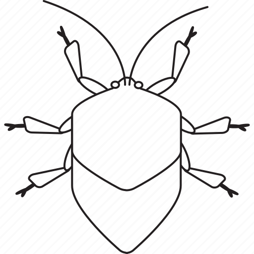 Bw, stinkbug, art, bug, bugs, graphic, insect icon - Download on Iconfinder